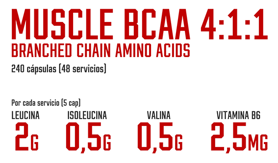 Titulo Muscle BCAA 4:1:1 240 capsulas